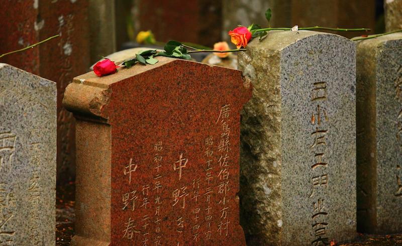 Miners Memorial Rose - online order